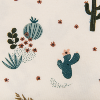 Cotton jersey printed cacti in the desert multicolored