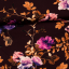 Viscose jersey printed purple roses in the dark multicolored