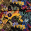 Viscose jersey retro flowers multicolored